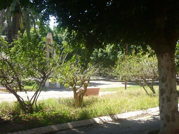 Oran3 15.jpg